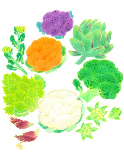 : 花野菜